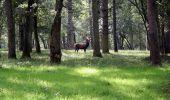 Trail Cycle Rochefort - Vallée de la Lesse : variante 2 - Photo 15