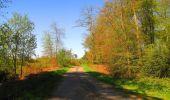 Trail Walk DAMPLEUX - en forêt de Retz_80_sur la Route Tortue et la Route Droite - Photo 255