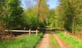 Trail Walk DAMPLEUX - en forêt de Retz_80_sur la Route Tortue et la Route Droite - Photo 82