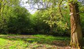 Trail Walk DAMPLEUX - en forêt de Retz_80_sur la Route Tortue et la Route Droite - Photo 73
