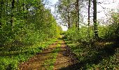 Trail Walk DAMPLEUX - en forêt de Retz_80_sur la Route Tortue et la Route Droite - Photo 109