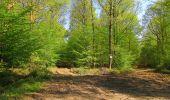 Trail Walk DAMPLEUX - en forêt de Retz_80_sur la Route Tortue et la Route Droite - Photo 267