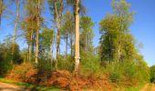 Trail Walk DAMPLEUX - en forêt de Retz_80_sur la Route Tortue et la Route Droite - Photo 105