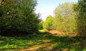 Trail Walk DAMPLEUX - en forêt de Retz_80_sur la Route Tortue et la Route Droite - Photo 72