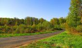 Trail Walk DAMPLEUX - en forêt de Retz_80_sur la Route Tortue et la Route Droite - Photo 83