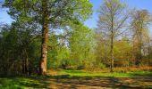 Trail Walk DAMPLEUX - en forêt de Retz_80_sur la Route Tortue et la Route Droite - Photo 71