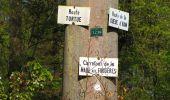 Trail Walk DAMPLEUX - en forêt de Retz_80_sur la Route Tortue et la Route Droite - Photo 106
