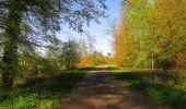Trail Walk DAMPLEUX - en forêt de Retz_80_sur la Route Tortue et la Route Droite - Photo 257