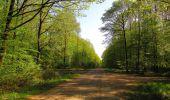Trail Walk DAMPLEUX - en forêt de Retz_80_sur la Route Tortue et la Route Droite - Photo 266