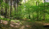 Trail Walk DAMPLEUX - en forêt de Retz_80_sur la Route Tortue et la Route Droite - Photo 27