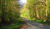 Trail Walk DAMPLEUX - en forêt de Retz_80_sur la Route Tortue et la Route Droite - Photo 242