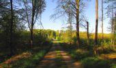 Trail Walk DAMPLEUX - en forêt de Retz_80_sur la Route Tortue et la Route Droite - Photo 108