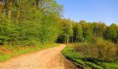 Trail Walk DAMPLEUX - en forêt de Retz_80_sur la Route Tortue et la Route Droite - Photo 84