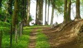 Trail Walk Vaals -  - Photo 6