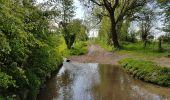 Trail Walk Vaals -  - Photo 4