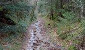 Randonnée Marche nordique LOUBEYRAT - Le Bouquet - Le roc du diable - Photo 1
