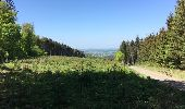 Randonnée Marche Tellin - Balade à Grupont - Photo 4