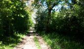 Randonnée Marche nordique La Calamine - la_calamine_06_05_2018 - Photo 13