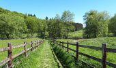 Randonnée Marche nordique La Calamine - la_calamine_06_05_2018 - Photo 6