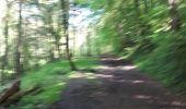 Randonnée Marche nordique La Calamine - la_calamine_06_05_2018 - Photo 2