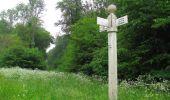 Randonnée Marche LACROIX-SAINT-OUEN - en forêt de Compiègne_35_la Croix Saint-Sauveur_le Ru du Goderu - Photo 16