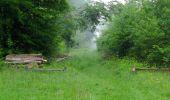 Randonnée Marche LACROIX-SAINT-OUEN - en forêt de Compiègne_35_la Croix Saint-Sauveur_le Ru du Goderu - Photo 93