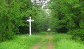 Randonnée Marche LACROIX-SAINT-OUEN - en forêt de Compiègne_35_la Croix Saint-Sauveur_le Ru du Goderu - Photo 55