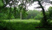 Randonnée Marche LACROIX-SAINT-OUEN - en forêt de Compiègne_35_la Croix Saint-Sauveur_le Ru du Goderu - Photo 69