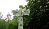 Randonnée Marche LACROIX-SAINT-OUEN - en forêt de Compiègne_35_la Croix Saint-Sauveur_le Ru du Goderu - Photo 54