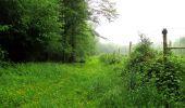 Randonnée Marche LACROIX-SAINT-OUEN - en forêt de Compiègne_35_la Croix Saint-Sauveur_le Ru du Goderu - Photo 20
