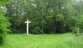 Randonnée Marche LACROIX-SAINT-OUEN - en forêt de Compiègne_35_la Croix Saint-Sauveur_le Ru du Goderu - Photo 21