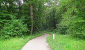 Randonnée Marche LACROIX-SAINT-OUEN - en forêt de Compiègne_35_la Croix Saint-Sauveur_le Ru du Goderu - Photo 39