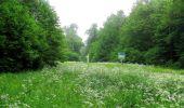 Randonnée Marche LACROIX-SAINT-OUEN - en forêt de Compiègne_35_la Croix Saint-Sauveur_le Ru du Goderu - Photo 14