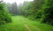 Randonnée Marche LACROIX-SAINT-OUEN - en forêt de Compiègne_35_la Croix Saint-Sauveur_le Ru du Goderu - Photo 53