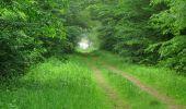 Randonnée Marche LACROIX-SAINT-OUEN - en forêt de Compiègne_35_la Croix Saint-Sauveur_le Ru du Goderu - Photo 52