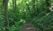 Trail Walk Dinant - Balade à Dinant - Photo 4