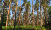 Randonnée Marche LACROIX-SAINT-OUEN - en forêt de Compiegne_16_Boquet Gras_Béthisy_Prés du Rosoir - Photo 86