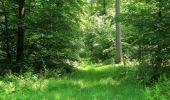 Randonnée Marche LACROIX-SAINT-OUEN - en forêt de Compiegne_16_Boquet Gras_Béthisy_Prés du Rosoir - Photo 8