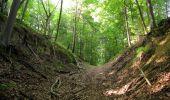 Randonnée Marche LACROIX-SAINT-OUEN - en forêt de Compiegne_16_Boquet Gras_Béthisy_Prés du Rosoir - Photo 94