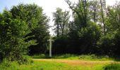 Randonnée Marche LACROIX-SAINT-OUEN - en forêt de Compiegne_16_Boquet Gras_Béthisy_Prés du Rosoir - Photo 69
