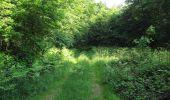 Randonnée Marche LACROIX-SAINT-OUEN - en forêt de Compiegne_16_Boquet Gras_Béthisy_Prés du Rosoir - Photo 91