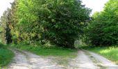 Randonnée Marche LACROIX-SAINT-OUEN - en forêt de Compiegne_16_Boquet Gras_Béthisy_Prés du Rosoir - Photo 110