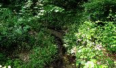 Randonnée Marche LACROIX-SAINT-OUEN - en forêt de Compiegne_16_Boquet Gras_Béthisy_Prés du Rosoir - Photo 48