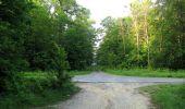 Randonnée Marche LACROIX-SAINT-OUEN - en forêt de Compiegne_16_Boquet Gras_Béthisy_Prés du Rosoir - Photo 119