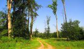Randonnée Marche LACROIX-SAINT-OUEN - en forêt de Compiegne_16_Boquet Gras_Béthisy_Prés du Rosoir - Photo 77