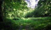 Randonnée Marche LACROIX-SAINT-OUEN - en forêt de Compiegne_16_Boquet Gras_Béthisy_Prés du Rosoir - Photo 93