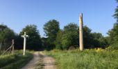 Randonnée Marche LACROIX-SAINT-OUEN - en forêt de Compiegne_16_Boquet Gras_Béthisy_Prés du Rosoir - Photo 123