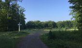 Randonnée Marche LACROIX-SAINT-OUEN - en forêt de Compiegne_16_Boquet Gras_Béthisy_Prés du Rosoir - Photo 116