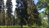 Randonnée Marche LACROIX-SAINT-OUEN - en forêt de Compiegne_16_Boquet Gras_Béthisy_Prés du Rosoir - Photo 108