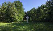 Randonnée Marche LACROIX-SAINT-OUEN - en forêt de Compiegne_16_Boquet Gras_Béthisy_Prés du Rosoir - Photo 90